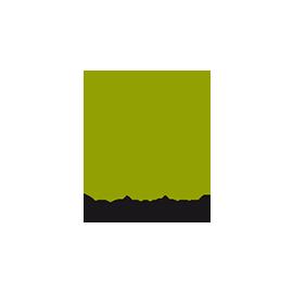 Brainshell